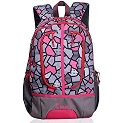 F Gear Dropsy 3D 22 Ltrs Pink Casual Backpack (2251)