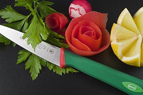 comprare on line Sanelli Premana Professional Coltello Spelucchino, Acciaio Inossidabile, Verde/Rosso, 21 x 1.5 x 2 cm prezzo