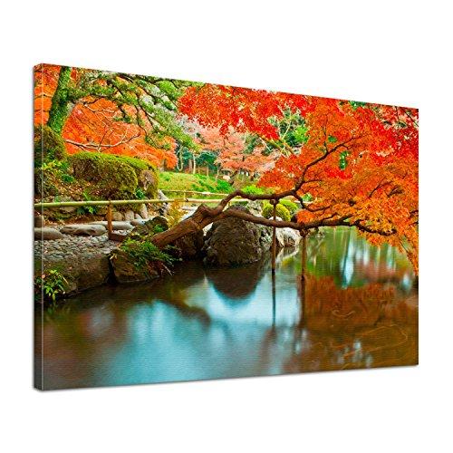 Leinwand Bild edel Natur Japanischer Garten Größe 60 x 40 cm