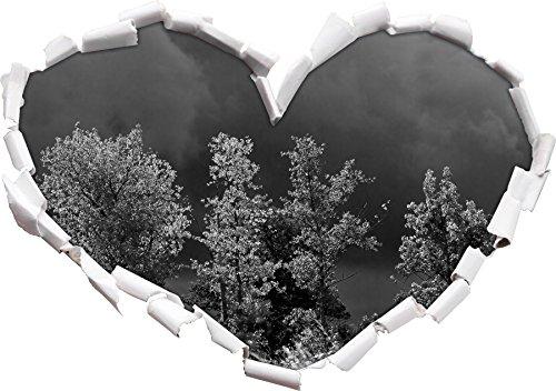 arbustes-avant-enorme-forme-de-coeur-nuage-avant-dans-le-regard-3d-mur-ou-un-autocollant-de-porte-fo