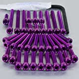 Aluminium Engine Kit Yamaha XV750 Virago Purple