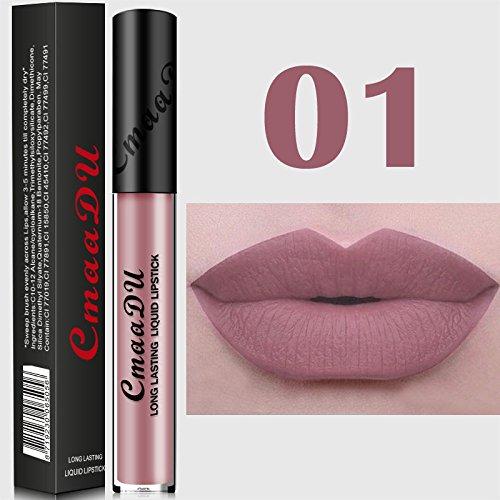 TOPBauty 2017new Arrivi sexy di 15 colori impermeabile nudo metallo opaco Nude Lip Long Lasting (Gloss Olio)