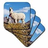 3dRose CST _ 85320_ 1–Argentina, Jujuy, Puna, Andes Mountains, llama herd–Sa01jri0389–Jutta Riegel–Posavasos (4unidades), diseño de Por 3dRose