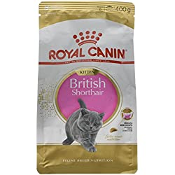 Royal Canin Kitten British Shorthair Nourriture pour Chat 400 g