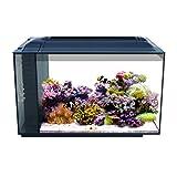 Fluval 10531A1Sea Evo XII. Aquarium-Set