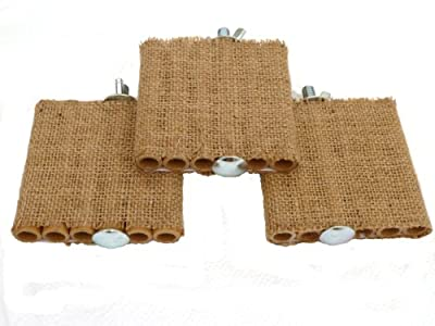 Degu Shelf - Three Pack