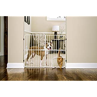 Carlson Extra Tall 81cm Step Over Expandable Pet Gate, with Small Pet Door 51FX3TLKhlL