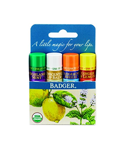 Badger Orgánica Lip Balm 4 Sticks Gift Set Paquete Azul