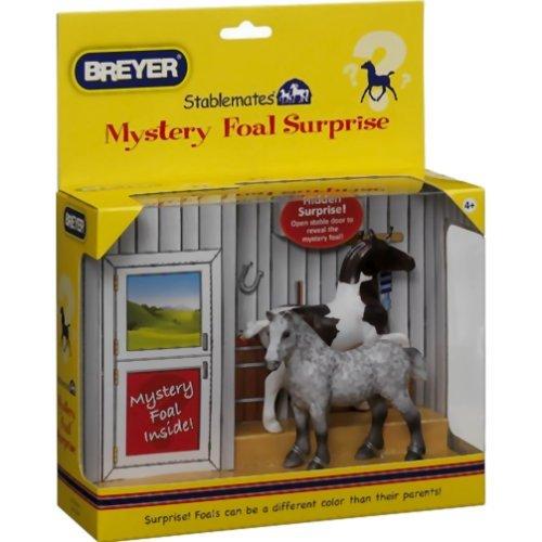 paquet-surprise-mystere-poulain-2-chevaux-1-poulain