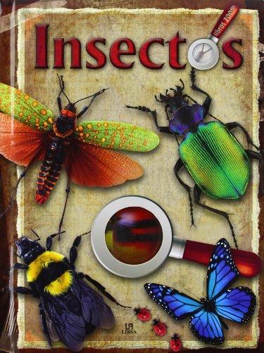 Insectos (Libros Zoom) por Equipo Editorial