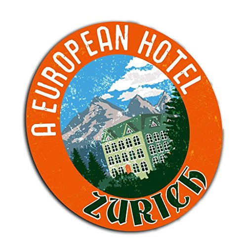2 x 30cm/300mm Zürich Ski Logo Fenster kleben Aufkleber Auto Van Wohnmobil Glas #4004
