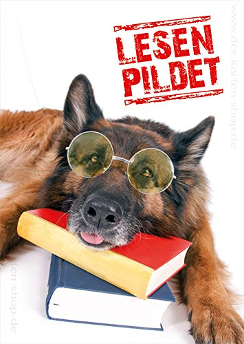 3 Stück witzige A6 Tierpostkarten Postkarten Grußkarte Hund mit Brille und Büchern