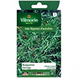Vilmorin - Sachet graines Roquette sauvage