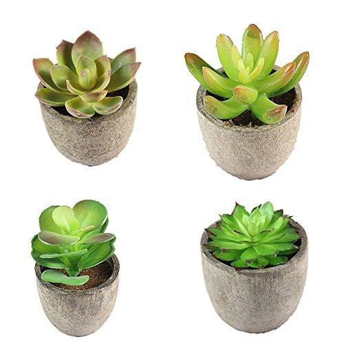 GZQ Künstliche Pflanzen Fake Sukkulente Übertopf Blume für Hochzeit Geburtstag Baby Dusche Home Office Party Decor Halloween Succulent Plant a