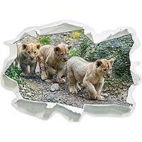 cuccioli di leone carino, carta 3D della parete di formato: 62x45 cm decorazione della parete 3D Wall Stickers murali Stickers