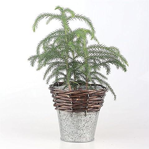 Handmade Ferro in vimini vaso di fiori vaso Cactus Piante Desktop - Basket Weave Planter
