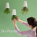 AlienTech Sky Planter, hängender Blumentopf, kopfüber, selbstbewässernd, kreativer Blumentopf für zu Hause, Büro, Dekoration für den Innen- und Außenbereich, mittelgroß