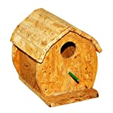 #10: Amijivdaya Fancy Sparrow Home