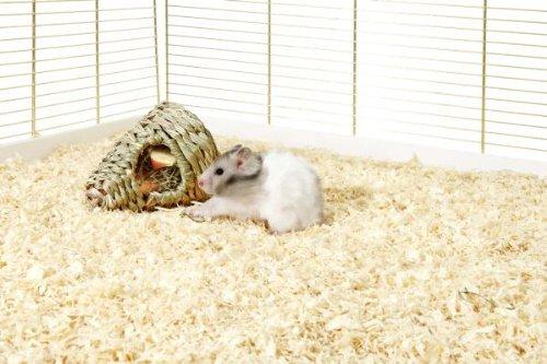 karlie-erba-nest-wonderland-green-igloo-per-roditori