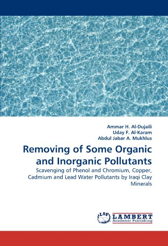 Removing of Some Organic and Inorganic Pollutants: Scavenging of Phenol and Chromium, Copper, Cadmium and Lead Water Pollutants by Iraqi Clay Minerals - Art Clay Copper Clay