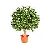 Künstliche Buchskugel TOM auf Stamm, 430 Blätter, 45 cm, Ø 30 cm - Künstlicher Buchsbaum Buxkugel Buchsbaumkugel - artplants