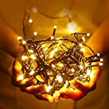 MeeQee LED-Leuchten String 33ft 100 LED Fairy Strip Lights Lampe für Weihnachtsbaum Urlaub Hochzeit Dekoration Halloween Schaufenster Displays Restaurant oder Bar und Hausgarten Hochzeit - Steuern Sie bis zu 8 Modi