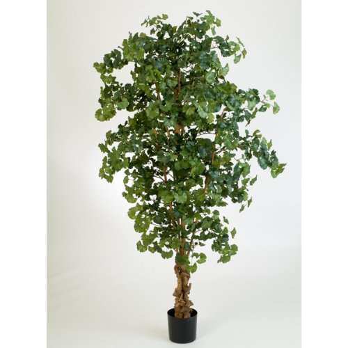 Albero di Ginkgo artificiale in vaso, 1615 foglie, verde, 210 cm - Pianta giapponese / Albero ornamentale - artplants