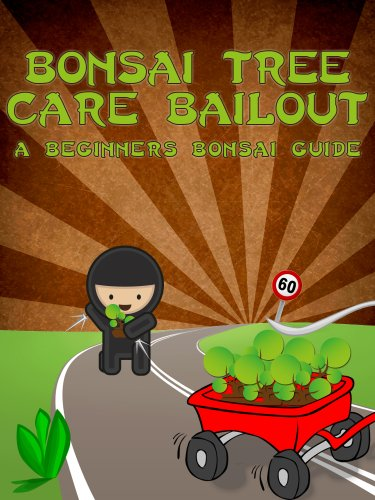 Bonsai Tree Care Bailout A Beginner S Bonsai Guide Bonsai Cultivation And Care Book 1