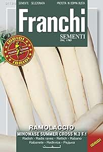 Rettichsamen - Rettich Minowase Summer Cross Nr. 3 von Franchi Sementi