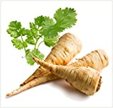 National Gardens Parsnip White Root Vegetable Seeds