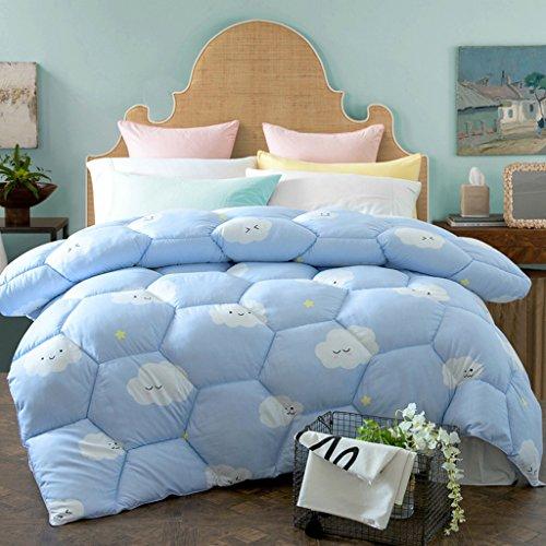 MMM Printemps et automne Quilt Hiver plus épais Garder un étudiant chaleureux Quilts Literie douce Quilt Individual Core ( taille : 220*240cm(4kg) )