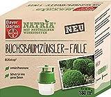 Buchsbaumzünsler Falle Buxatrap Bayer 5er Sparpack