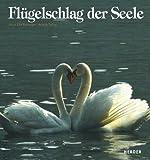 Flügelschlag der Seele - Knud E Buchmann