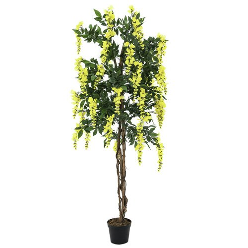 Euro Palms 82507115 Goldregenbaum 150 cm, gelb