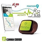 Kippy GPS per cani e gatti oltre i 5 kg, Funziona con smarphone e tablet, Marrone