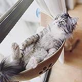 YK-GVOR Cuccia Gatto Gatto Gatto Finestra Gatto Gatto Amaca Letto Finestra Asta Morbido Feltro Naturale Gatto Finestra Sedile Gatto Letto per Animali Domestici Riposo a casa