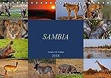 Sambia - wundervolle Wildnis (Tischkalender 2018 DIN A5 quer): Das wahre Afrika erleben (Monatskalender, 14 Seiten ) (CALVENDO Orte) [Kalender] [Apr 01, 2017] Woyke, Wibke - Wibke Woyke