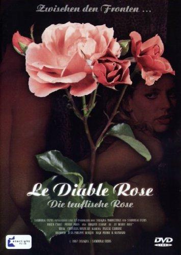 Bild von Le Diable Rose