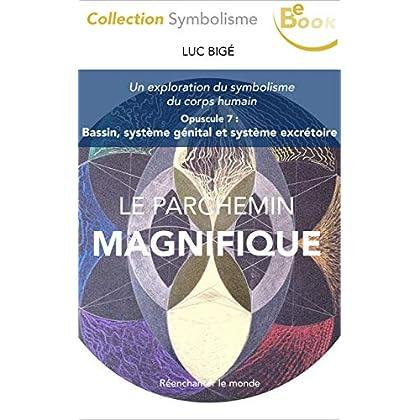 Le Parchemin Magnifique (7) : Bassin, système génital et système excrétoire: Une exploration du symbolisme du corps humain