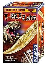 T-Rex Zahn: 12 cm langer Zahn zum Ausgraben