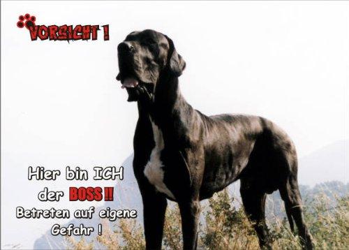 Tür Dogge Hund (INDIGOS UG - Türschild FunSchild - SE435 DIN A5 ACHTUNG Hund Deutsche Dogge - für Käfig, Zwinger, Haustier, Tür, Tier, Aquarium - aus hochwertigem Alu-Dibond beschriftet sehr stabil)
