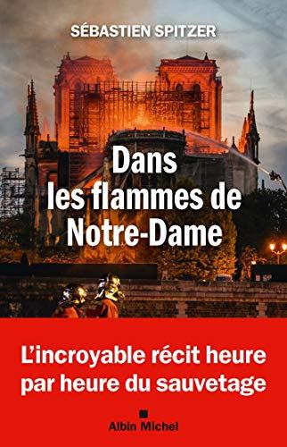 Dans les flammes de Notre-Dame (A.M. SOCIETE) par  Albin Michel