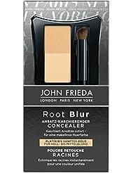 John Frieda Root Blur Ansatz-kaschierender Concealer - Platin bis sanftes Gold für Hell- mittelblond, 2er Pack (2 x 2.1 g)