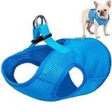 OER No-Pull Pet Harness Klettverschluss Schnalle Befestigung Outdoor Pet Weste explosionsgeschütztes Mesh-Material für kleine mittelgroße Hunde blau,S