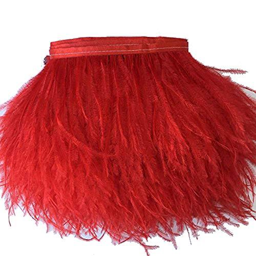 KOLIGHT Gefärbte Straußenfedern, natürlich, ca. 10-15 cm, Fransenborte für selbstgemachtes Kleid, zum Nähen, Basteln, für Kostüme, Dekoration, Packung mit 1,8 m rot