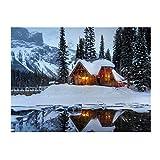 HYFBH Quadro Quadro Moderno Quadro su Tela Immagini Immagini Paesaggio di Neve Pittura Quadro Moderno Decorazioni per la casa Soggiorno 60x80cm Casa Luminosa