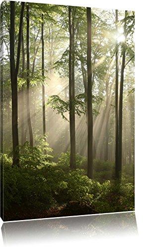 Pixxprint LFs7845_80x60 wunderschöner Lichtfall durch dichten Wald fertig gerahmt mit Keilrahmen Kunstdruck kein Poster oder Plakat auf Leinwand, 80 x 60 cm