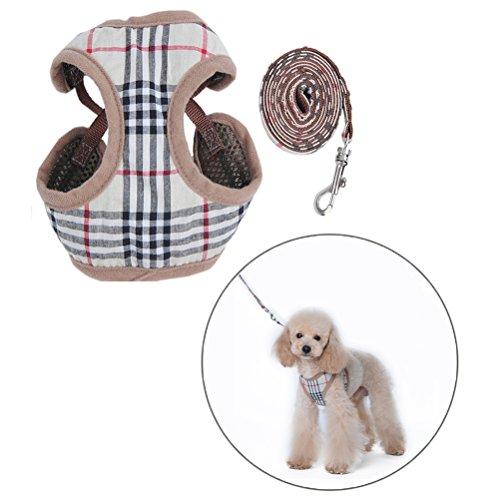 D&D DD Imbracatura e Piombo per Puppies, Regolabile Pettorina e Guinzaglio per Cani Taglia Piccola