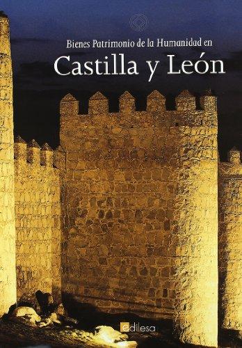 Bienes patrimonio de la humanidad en Castilla y León