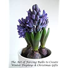 The Art of Forcing Bulbs to Create Winter Displays and Christmas Gifts